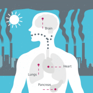 air pollution affects you health