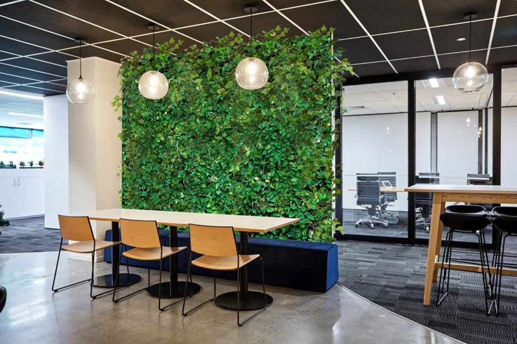 Plants in The Office Increase Productivity
