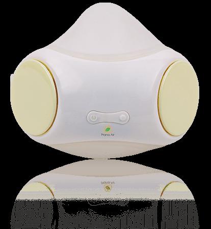 prana air adult-kid pollution mask